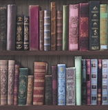 Show details for WALLPAPER PAPER 101689 BROWN BOOKS (6)