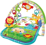 Show details for Fisher Price Musical Activity Gym CHP85