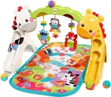 Show details for Fisher Price Newborn To Toddler Play Gym CCB70