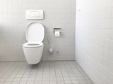 Picture for category TOILET BOWLS, BIDETS, URINALS & ACCESSORIES