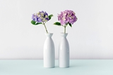 Picture for category Vases