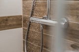 Picture for category Shower faucets